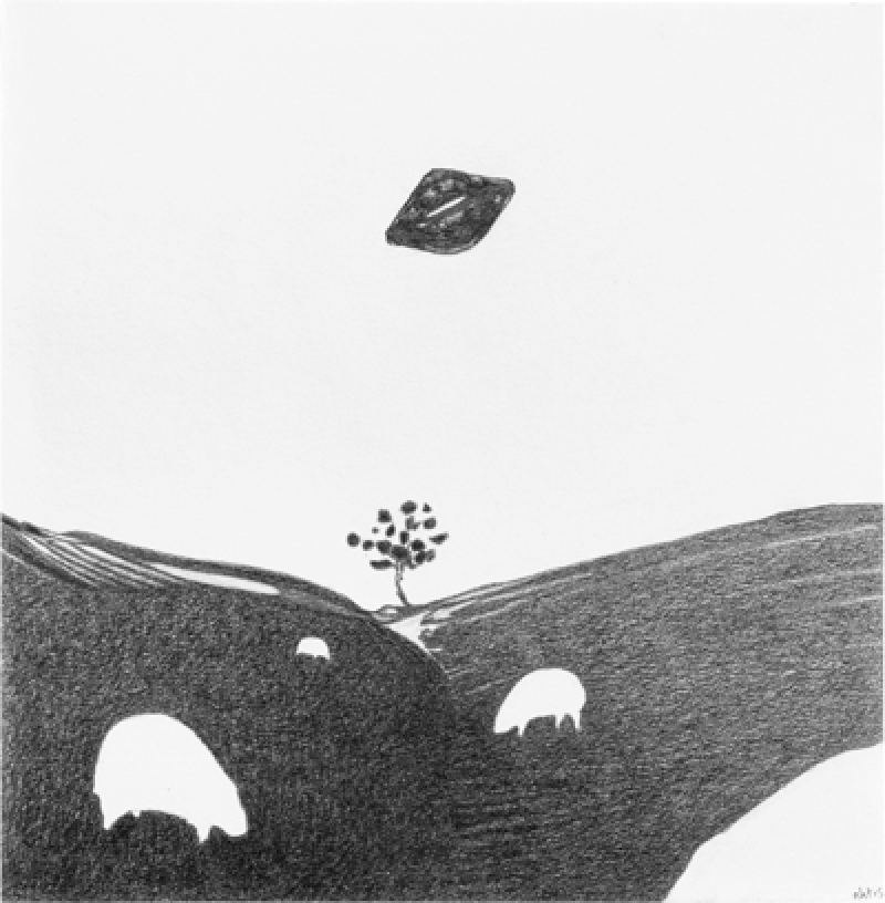 Grazing sheep and sky object, 2015